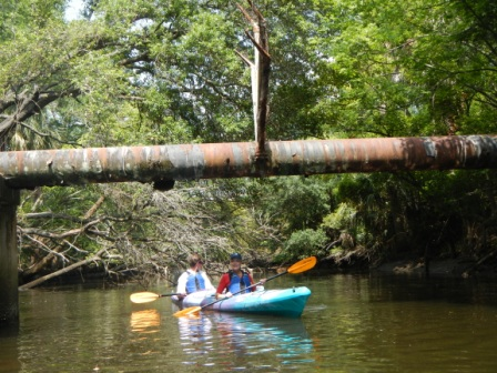 Urban Kayaking in Jacksonville with Lewis and Clark